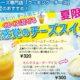 大泉のチーズ専門店 クッキングチーズの夏のおすすめ!